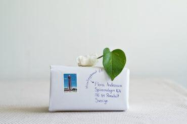 Plantbyrån skicka en stickling med posten