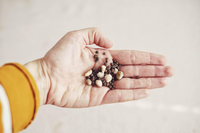 Plantbyrån perlite och lecakulor