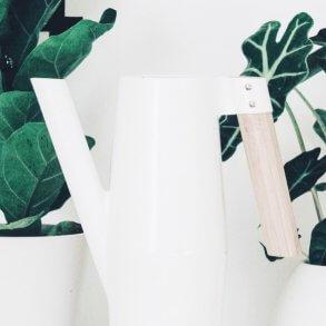 Plantbyrån vattenkannor