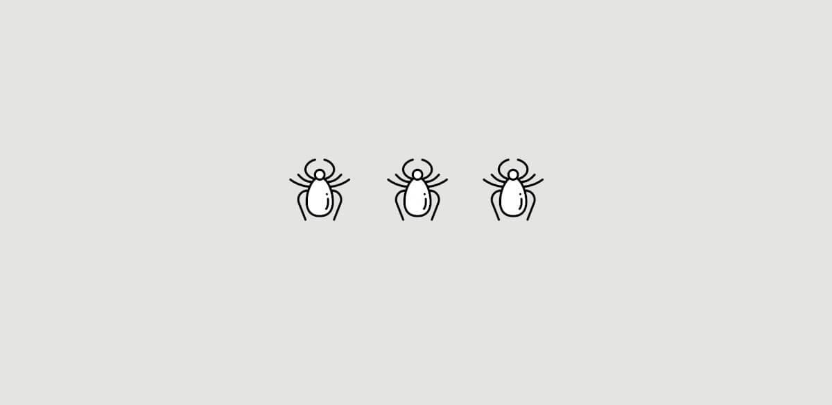 Spinn eller spinnkvalster