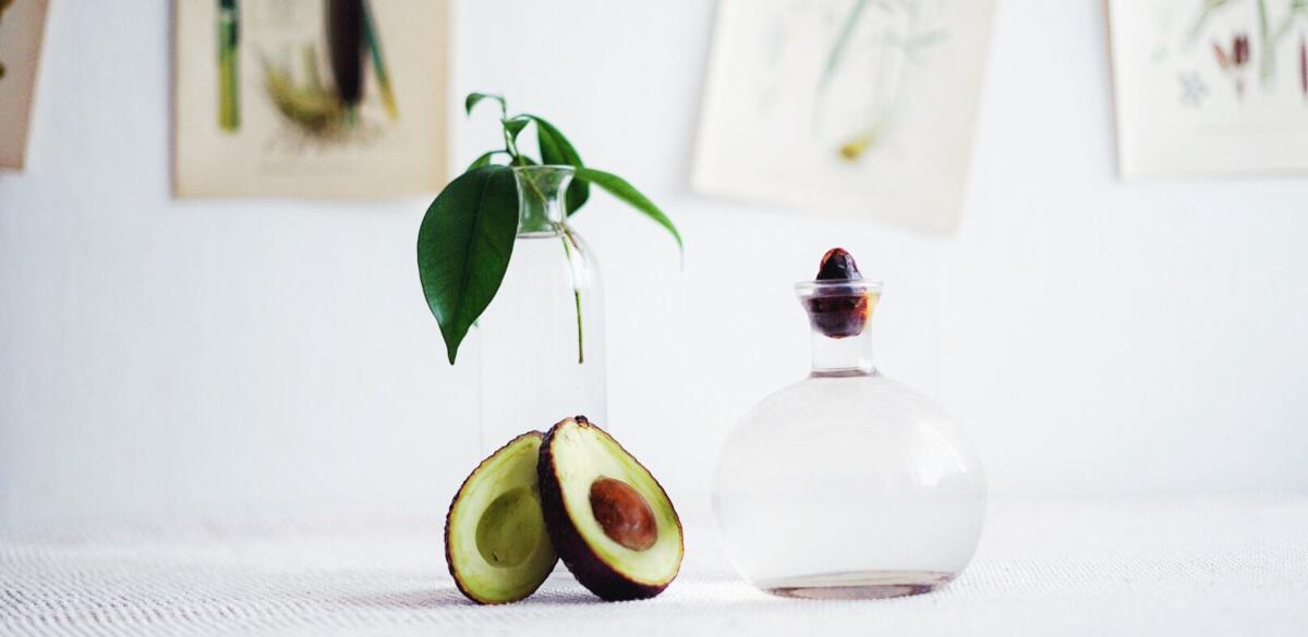 Plantera avokado från kärna